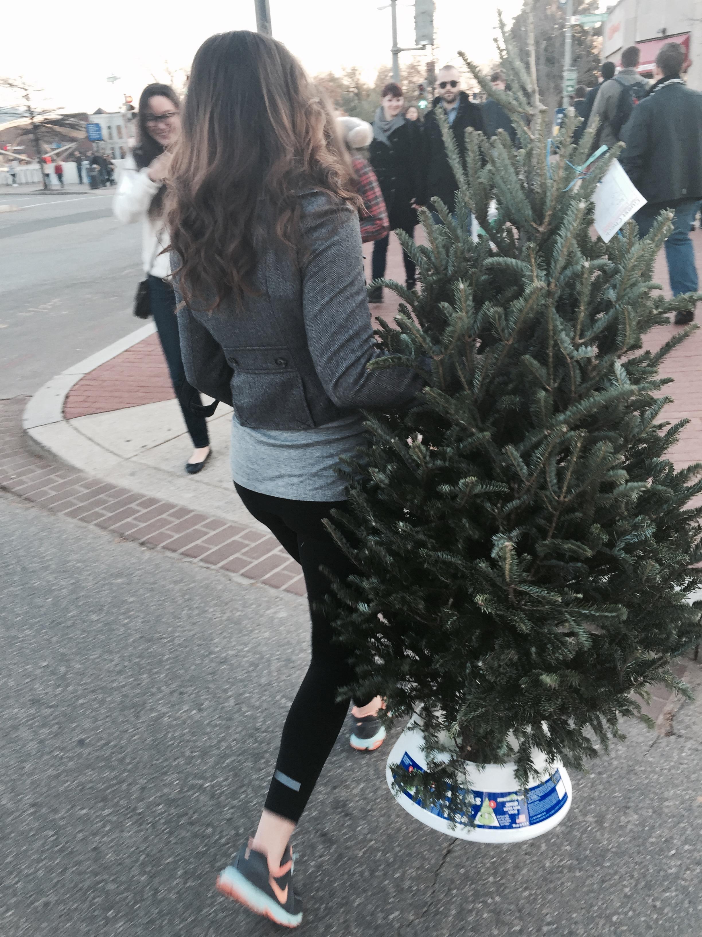 Eastern Market Christmas tree